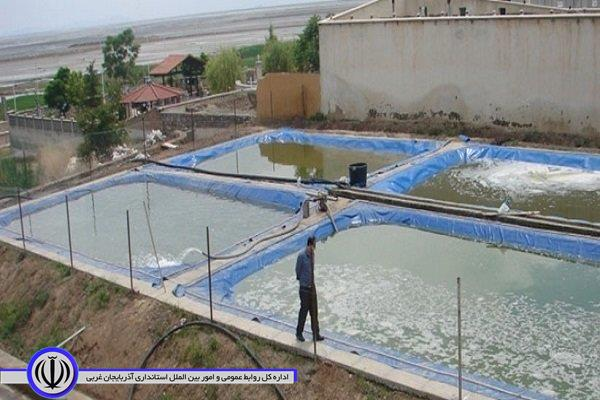 موافقت ستاد احیای دریاچه ارومیه با تخصیص آب پروژه پرورش آرتیمیا در 200 هکتار از اراضی دشت فسندوز میاندوآب